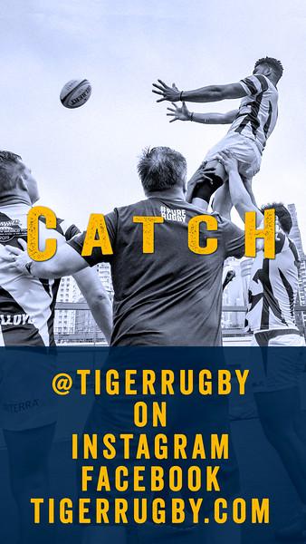 Catch Tiger03.jpg