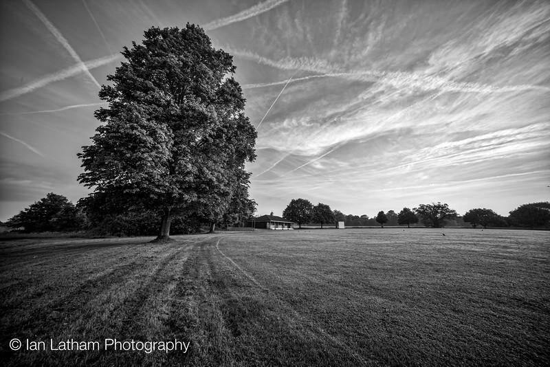 Pinkney's Green Cricket Club