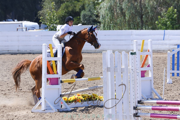 Santa Cruz County Fair 2014