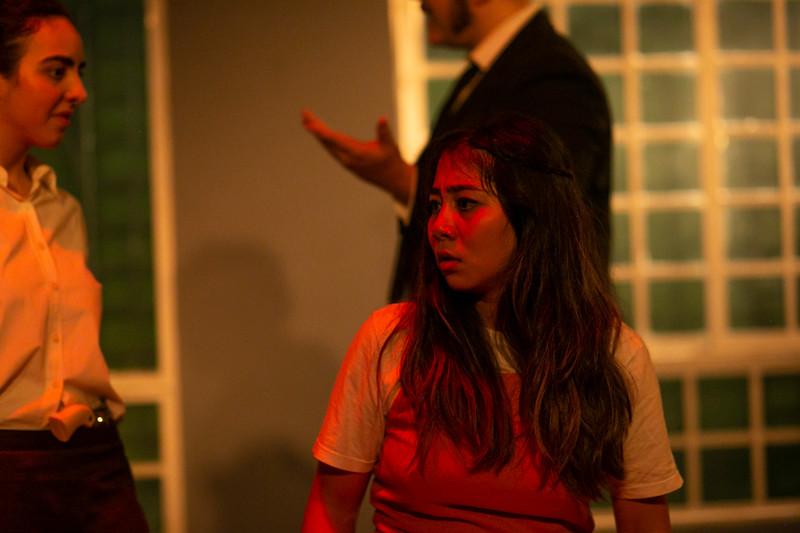 Allan Bravos - Celia Helena - O Beijo no Asfalto-446.jpg