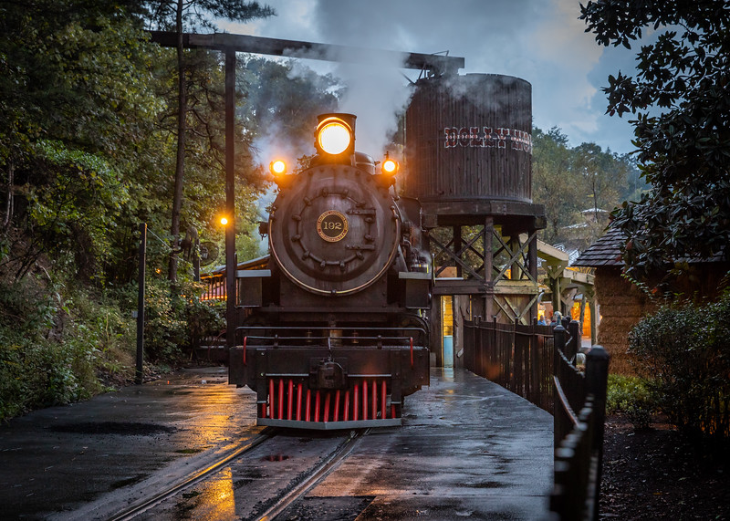 WVWS_Dollywood Railroad-7825.jpg