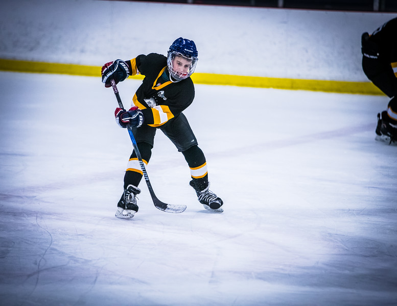 Bruins2-370.jpg