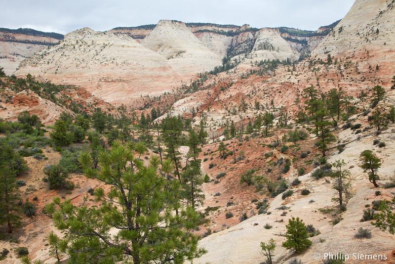 Looking down upper Pine creek