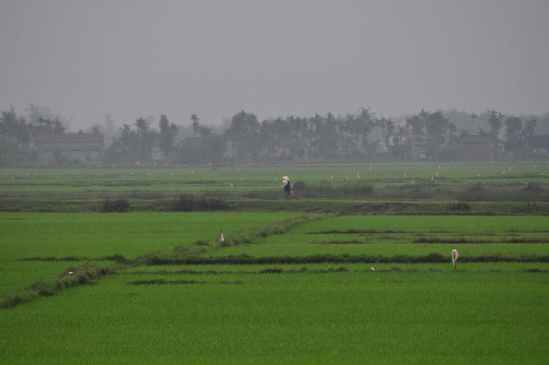 Day15-Saigon-9.jpg