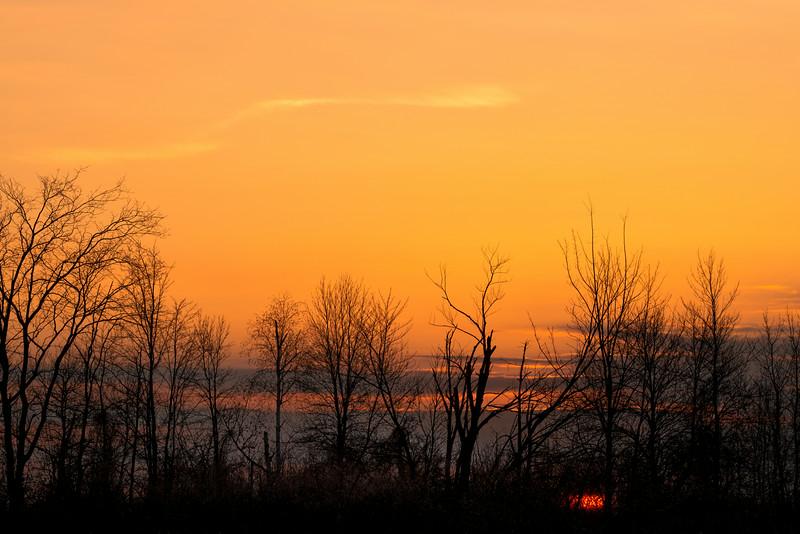 Sunrise in the swamp_Nov 17-2012_01.jpg
