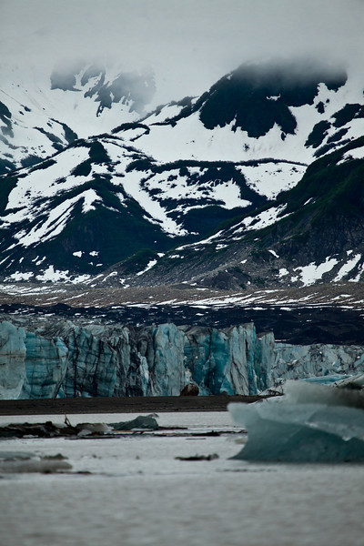 Alaska Copper River-9655.jpg