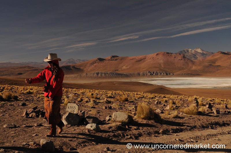 Salar Desertscape - Bolivia