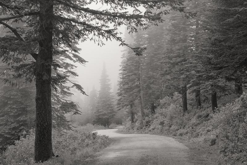 Mt Spokane Fog