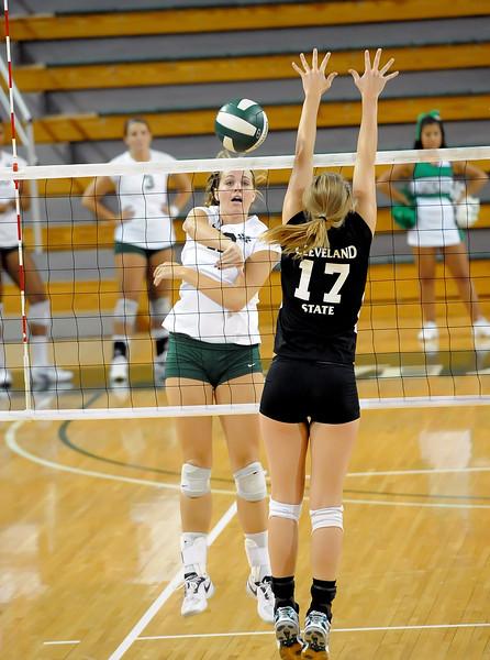 volleyball 3520.jpg