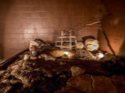 Caverns of Sonora,TX