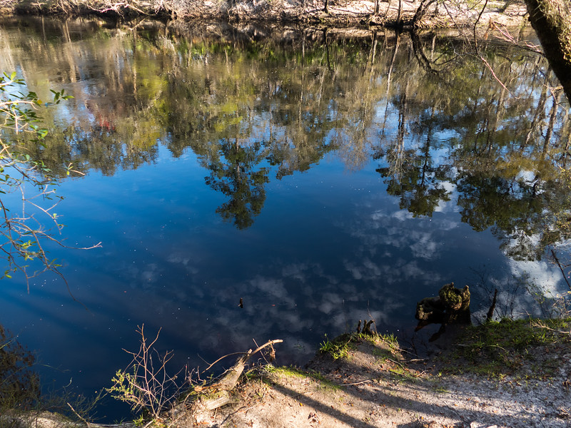 02-21--2019 Oleno River Trail (23 of 28).jpg