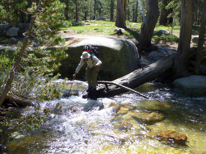Omi attempts the first of many water crossings.