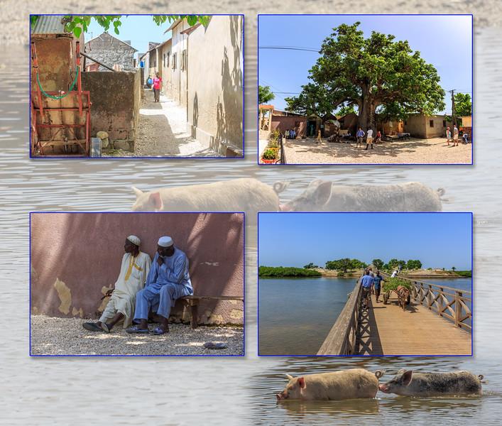 Senegal_019.jpg