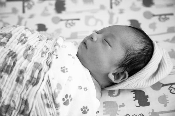 Baby Jabri