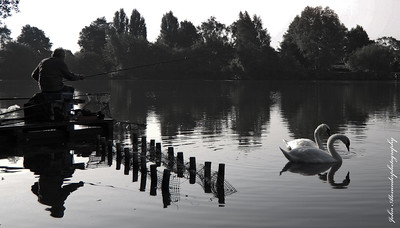 Lakeside Teamwork  © Copyright