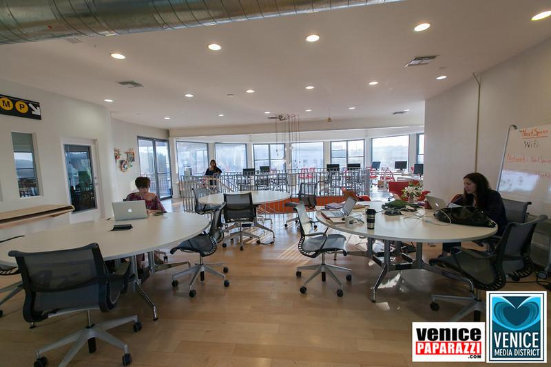 VenicePaparazzi.com-60.jpg