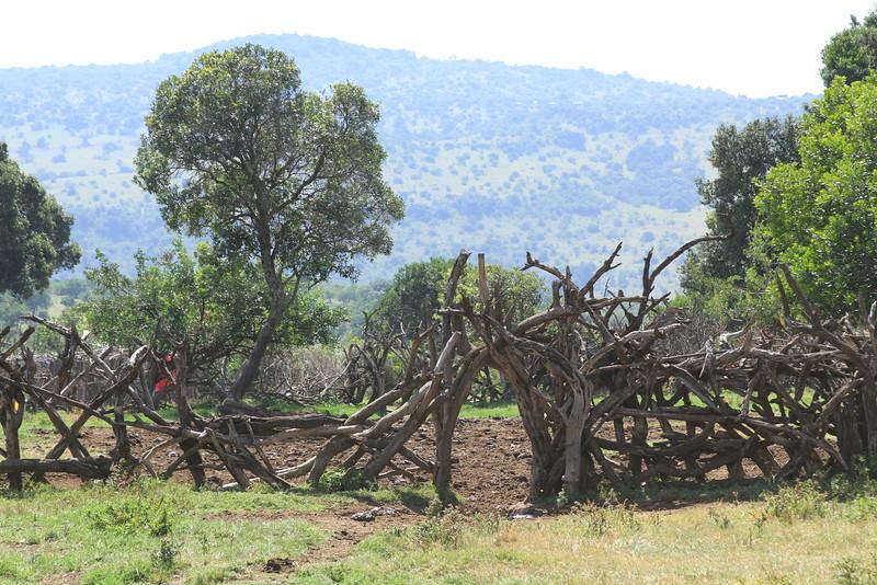 Kenya Part2 '15 964.JPG