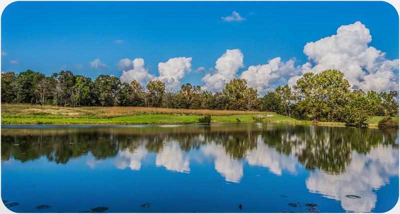 Pond Reflection/ Fincastle