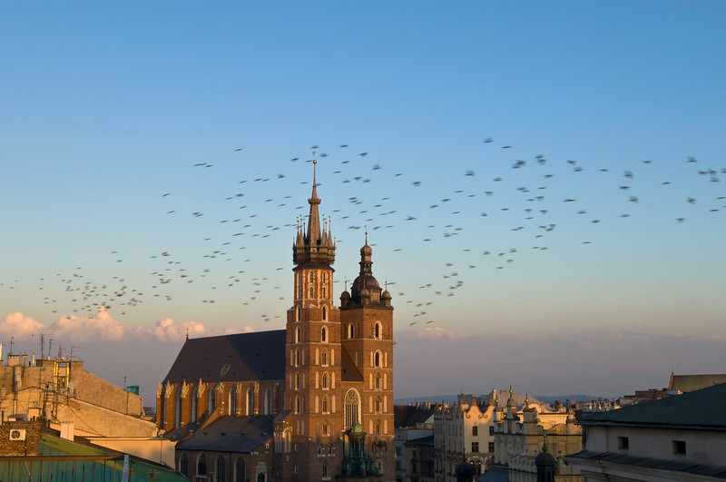 Poland, Cracow, Mariacki Church in the evening at sunset