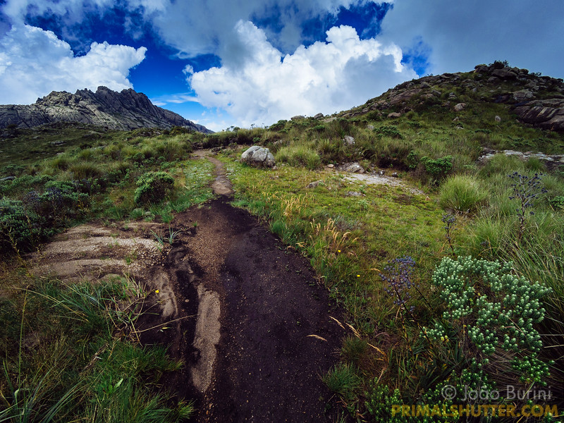 "Open path in Itatiaia national park with the ""agulhas negras"" peak in the background"