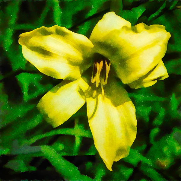 April 3 - Flower with yellow and green.jpg