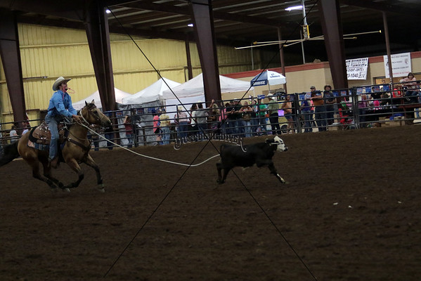 Friday Night Tie Down Roping