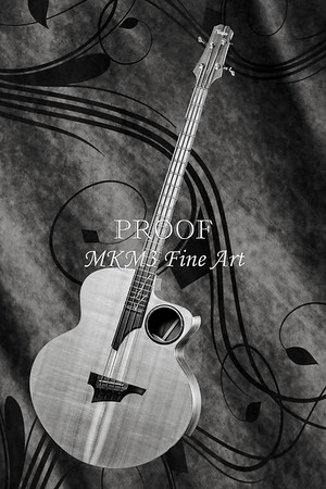 Taylor AB1 Acoustic Electric Bass Black and White