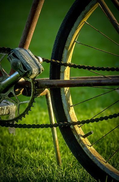 Bicycle, Balboa Park, San Diego, California