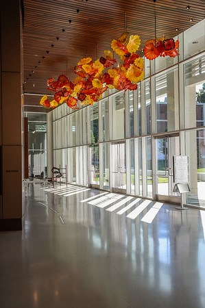 Chihuly RSRCA Lobby Ceiling