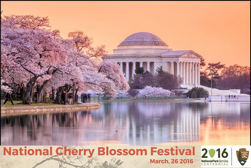 Boothie-NPS-CherryBlossom- (197).jpg