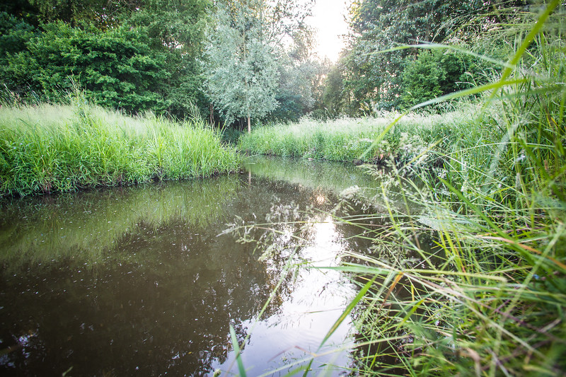 🌿Ons Mastbos & omgeving - locationscouting voor SPRINT Magazine