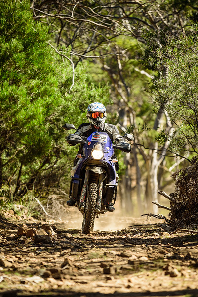 2019 KTM Australia Adventure Rallye (580).jpg