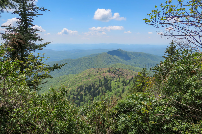 Mountains-to-Sea/Art Loeb Trail -- 5,960'