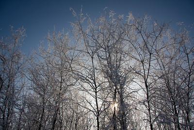 Badia di Dulzago -11°C,  20.12.2009