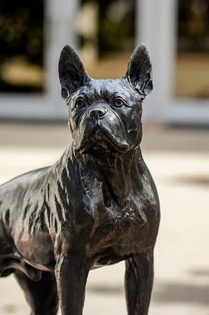 Terrier Bronze