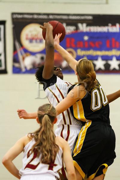 Girl's Basketball 2013-2014