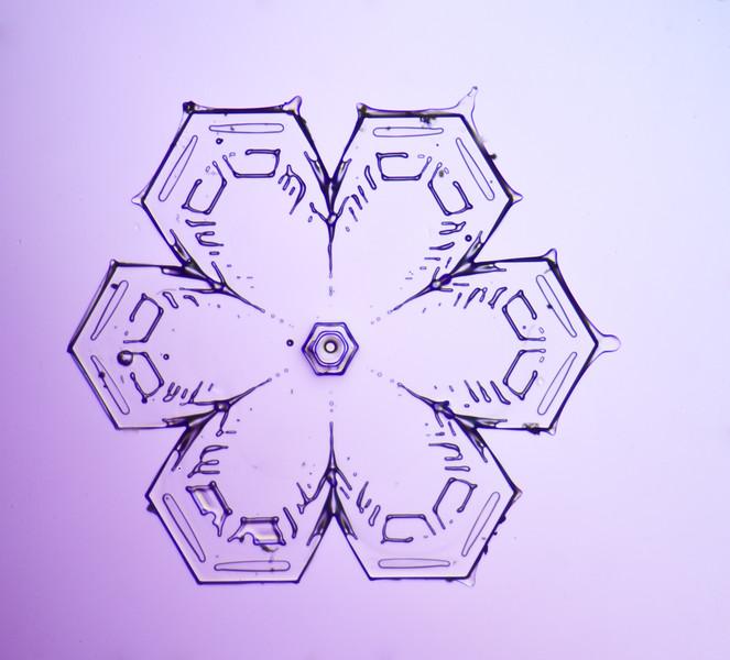 snowflake-3055-Edit.jpg