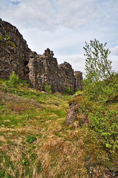 Iceland 2019-81.jpg