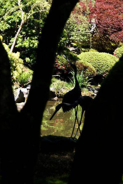 Portland Japanese Garden 6-3-11  1756.jpg