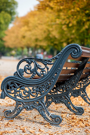 Victoria Park in autumn colours, Hackney, E9, London, United Kingdom