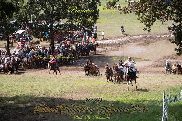 Saturday Big Mules