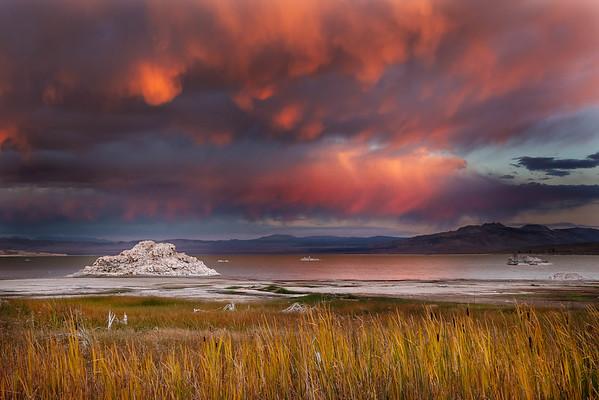 Eastern Sierra Fall 2014
