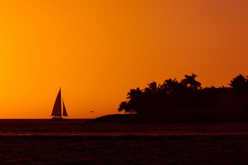 Miami-84.jpg