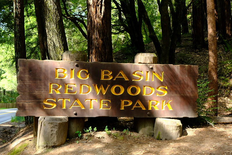 California Day 4 Big Basin 05-29-2017 7.JPG