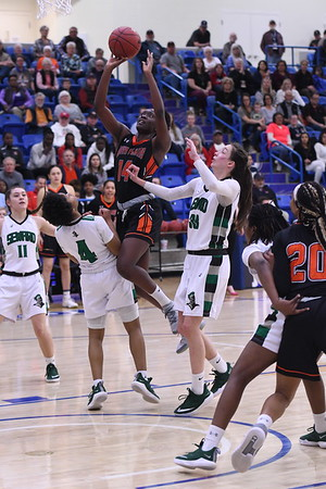 Lady Texans vs. Seward College - Sweet 16 - 2019 NJCAA Div. I Women's Basketball National Tournament