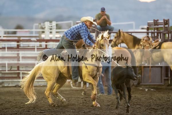 Tyrel Terry calf roping