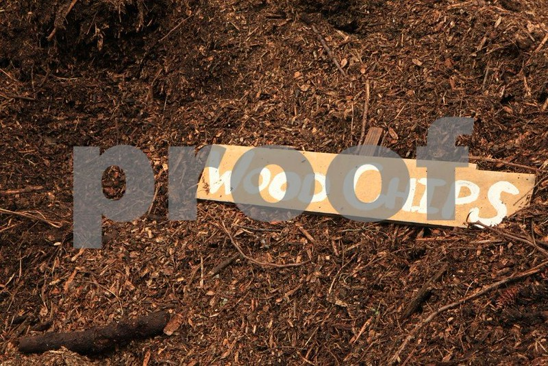 Compost, wood chips 5008.jpg