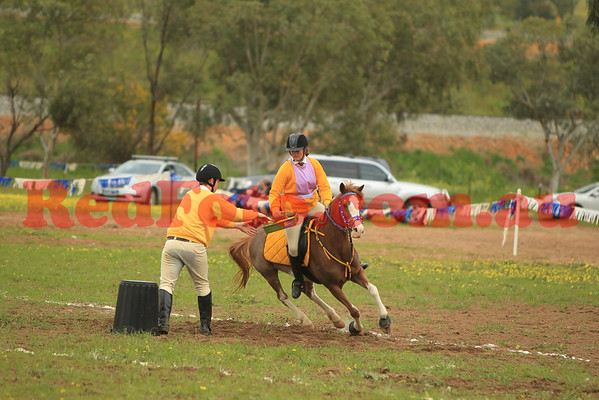 2014 09 07 PCAWA Active Riding Champs Qualifier Game 9 Tack Shop