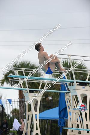 Class 2a Boys Diving