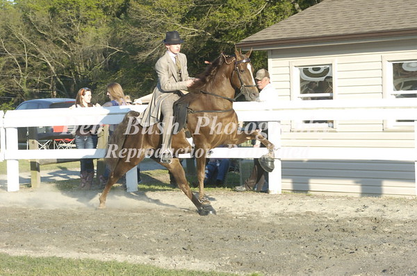 CLASS 23  YOUTH  WALKING PONY SPECIALTY